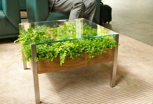 Marvelous Old Coffee Table Planter