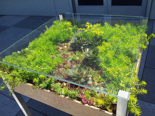 Fill Your Home With Greenery With The Living Table
