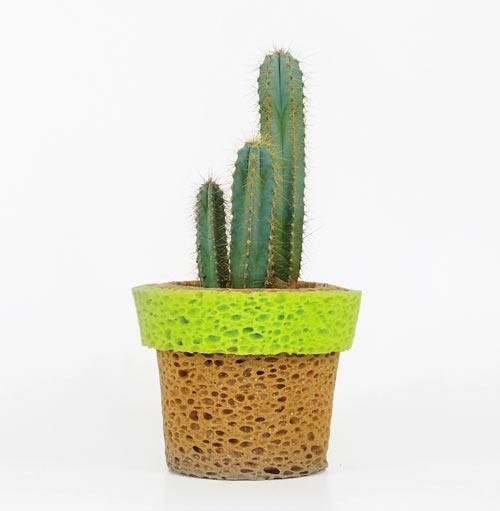 Sponge Vase: InVaso by Stefano Claudio Bison