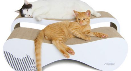 myKitty Modern Cat Beds and Scratchers