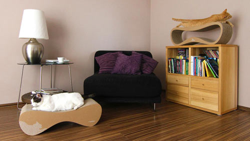 Mykitty modern cat bed room