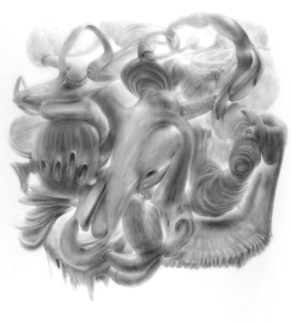 "Vumb, powdered graphite on mylar, 60"" x 48"", 2010"