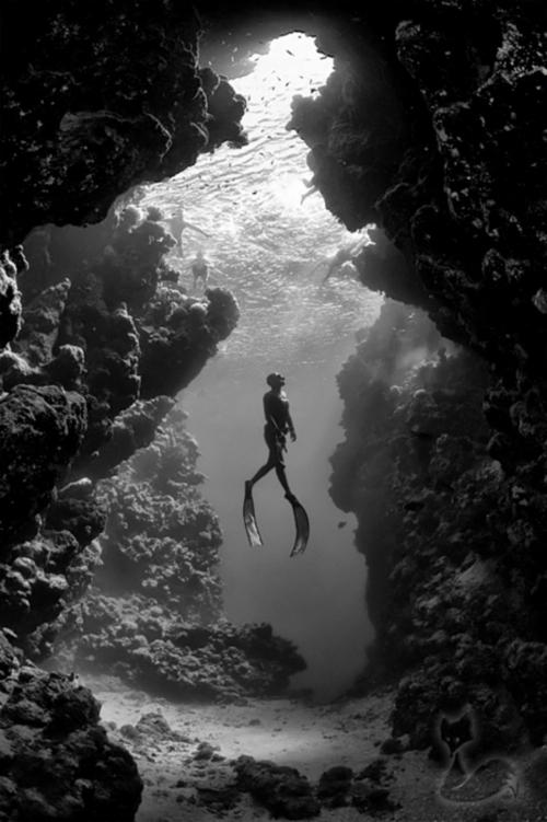 Photo by Jacques de Vos via National Geographic