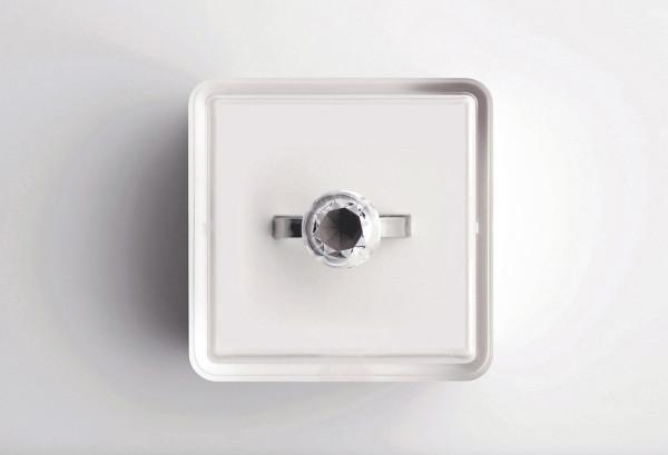Sasha-Tseng-Invisible-Ring-3