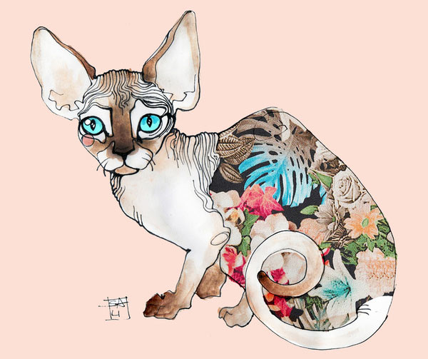 s6-sphinx-cat-print