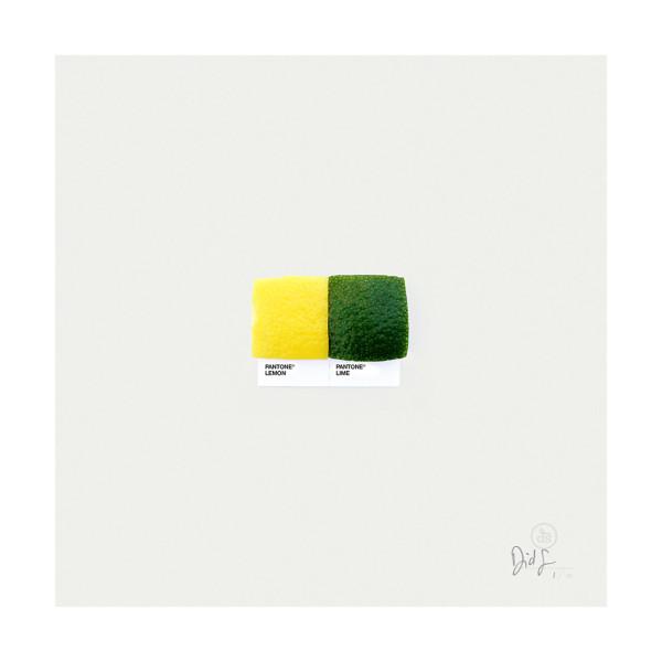 Pantone-Pairings-05_lemon_lime