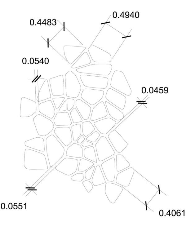 Voronoi-Bird-Cage-7-Pattern