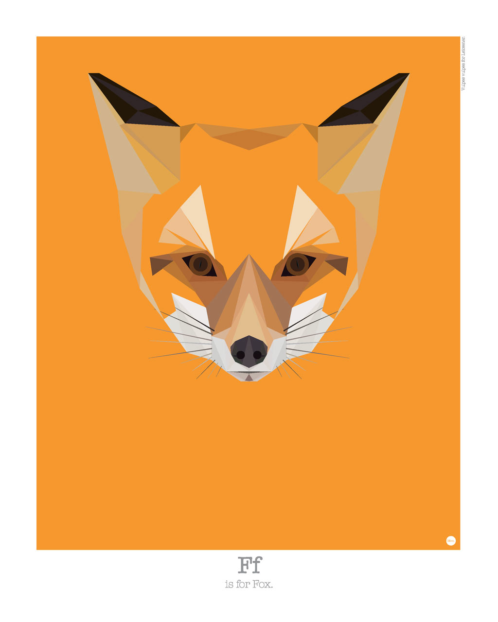 animal-alphabet-f-fox-mat-mabe