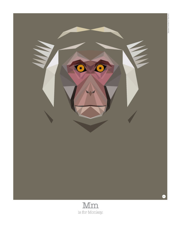 animal-alphabet-m-monkey-mat-mabe