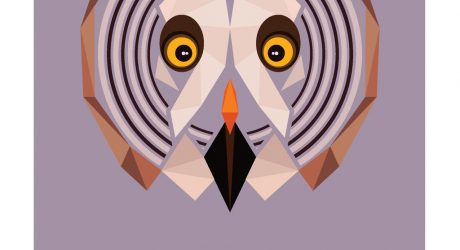 Graphic Art: Animal Alphabet by Mat Mabe