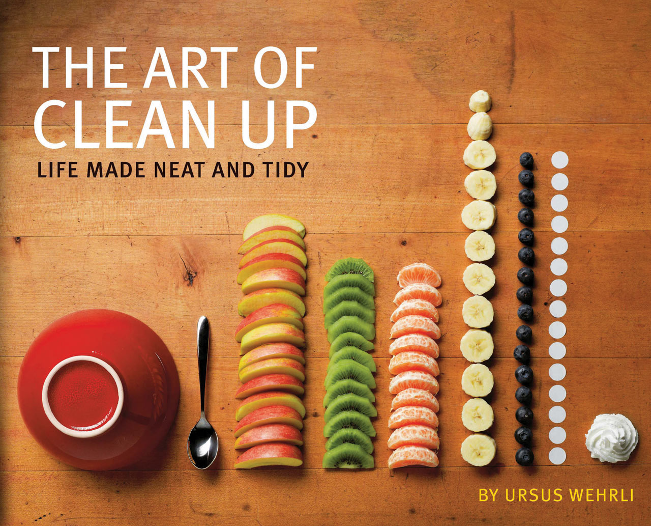 Organizing The Everyday: The Art of Clean Up