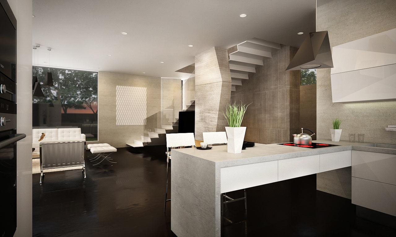 M-House-Marcel-Luchian-8