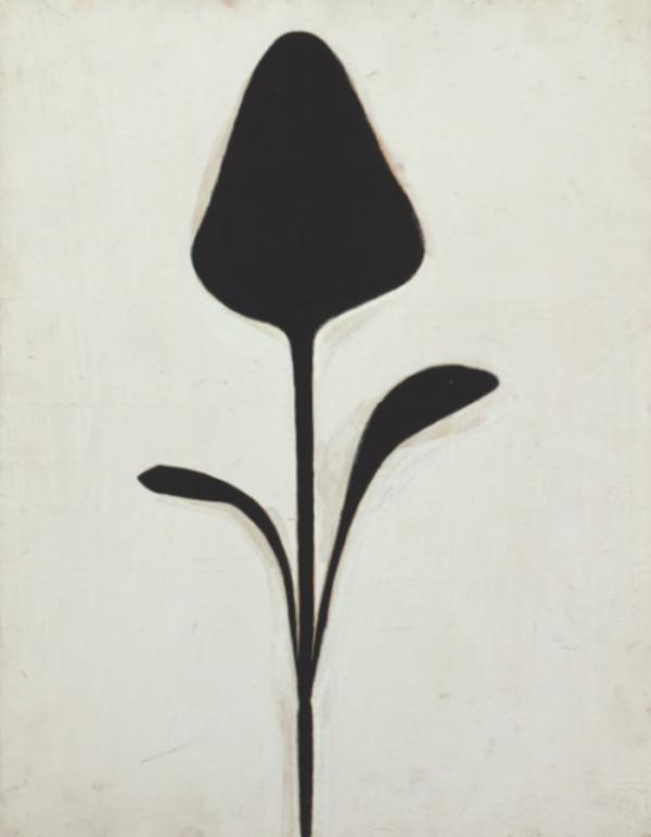 f5-judy-ross-ellsworth-kelly-plant