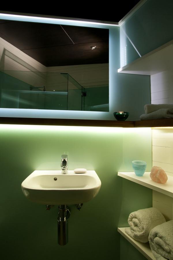 Dragonfly-House-Chris-Knapp-9-bath