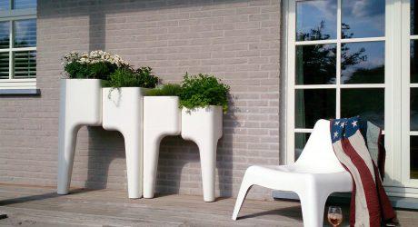 KiGA Kitchen Garden by Hurbz