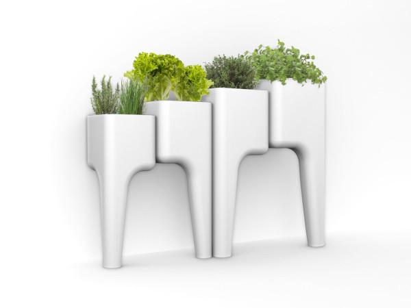 Hurbz-Vegetable-Garden-5
