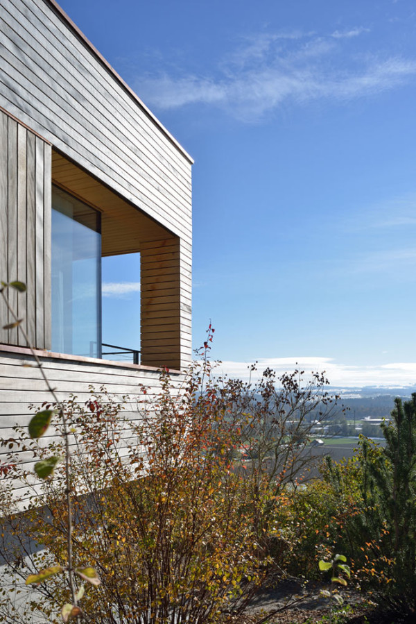Weinfelden-House-k_m-architektur-4