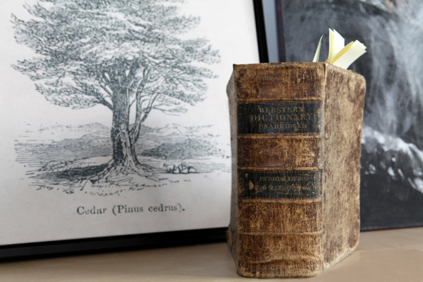 Adrian's 1820 Webster's Pictorial Edition Dictionary