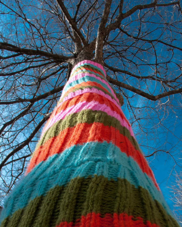 knitted-tree-trunk-yarn-bombing
