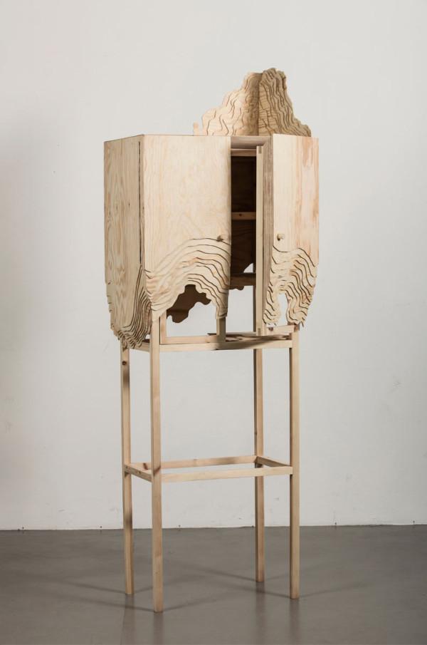 2-nate-cabinet-topographic-lisa-berkert-wallard