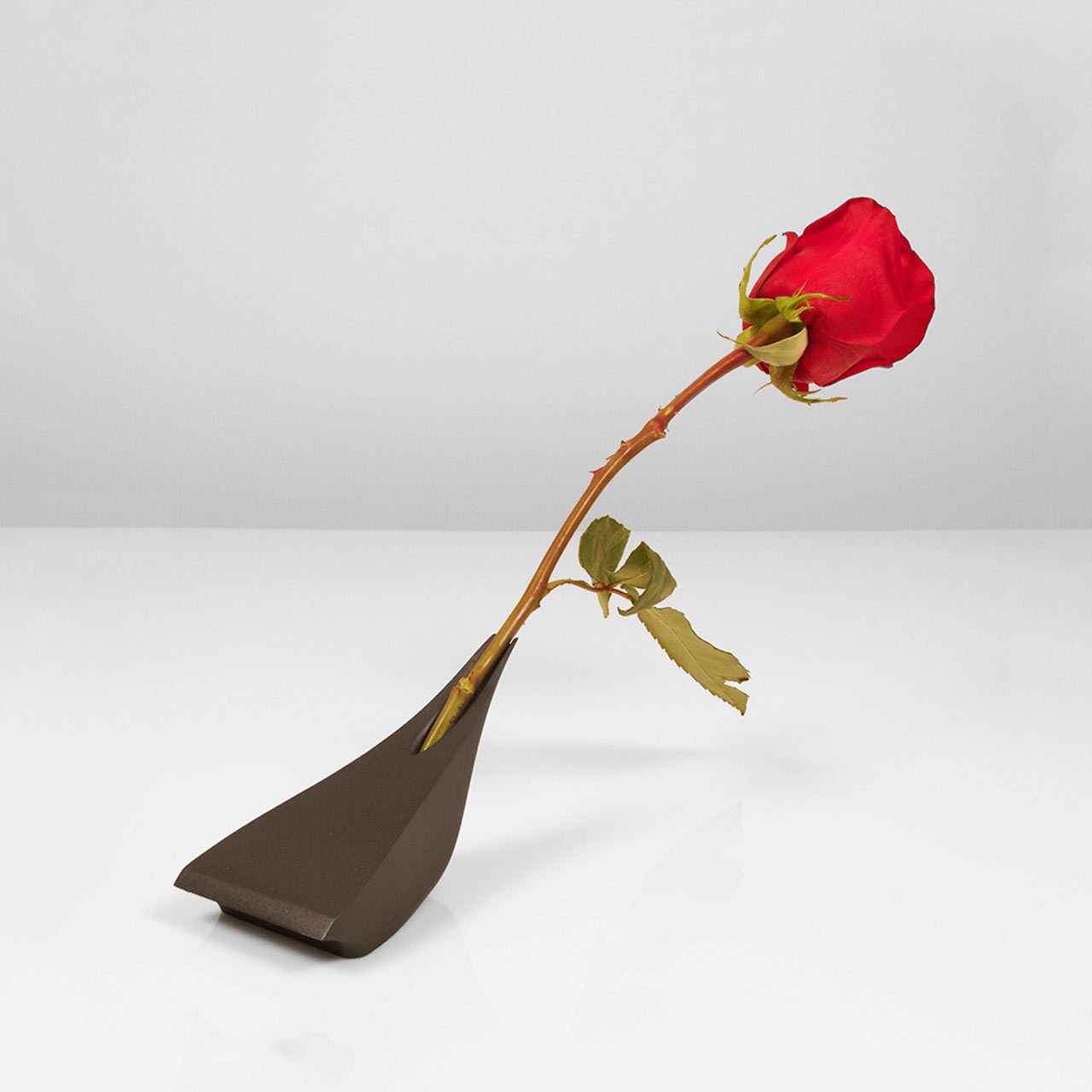 AntiVase-rose