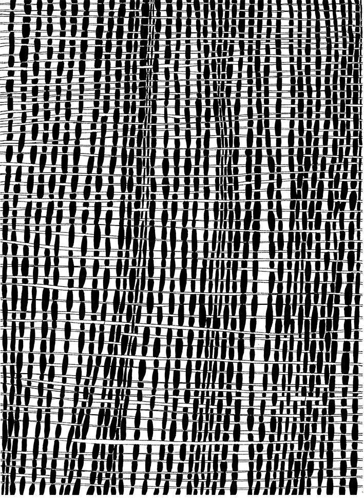 Marlene-Huissoud-Drawings-2-frame2
