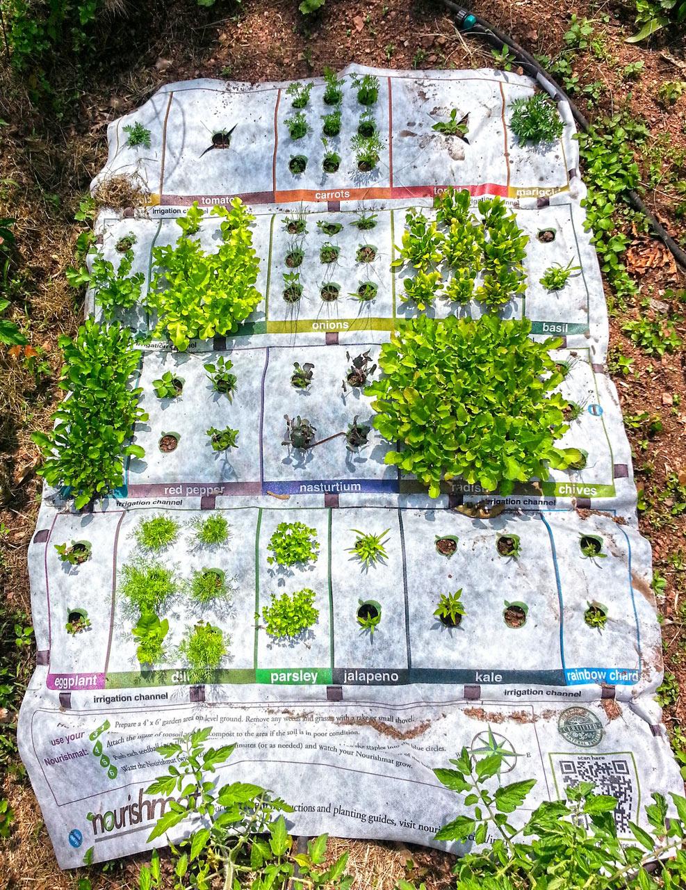 Nourishmat: Growing Your Own Food Just Got Super Easy