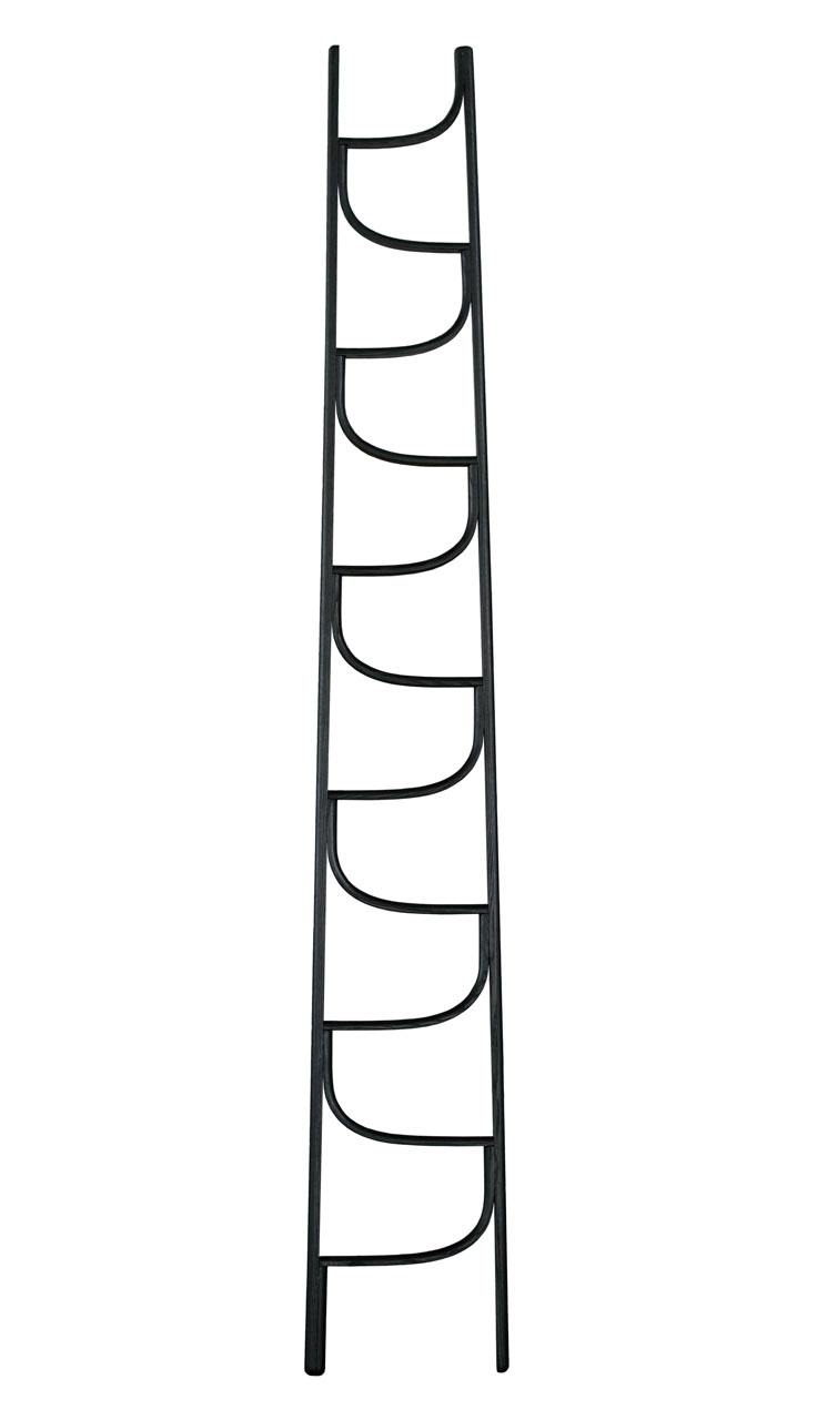 modern-ladder-black-Charlie-Styrbjorn-Design