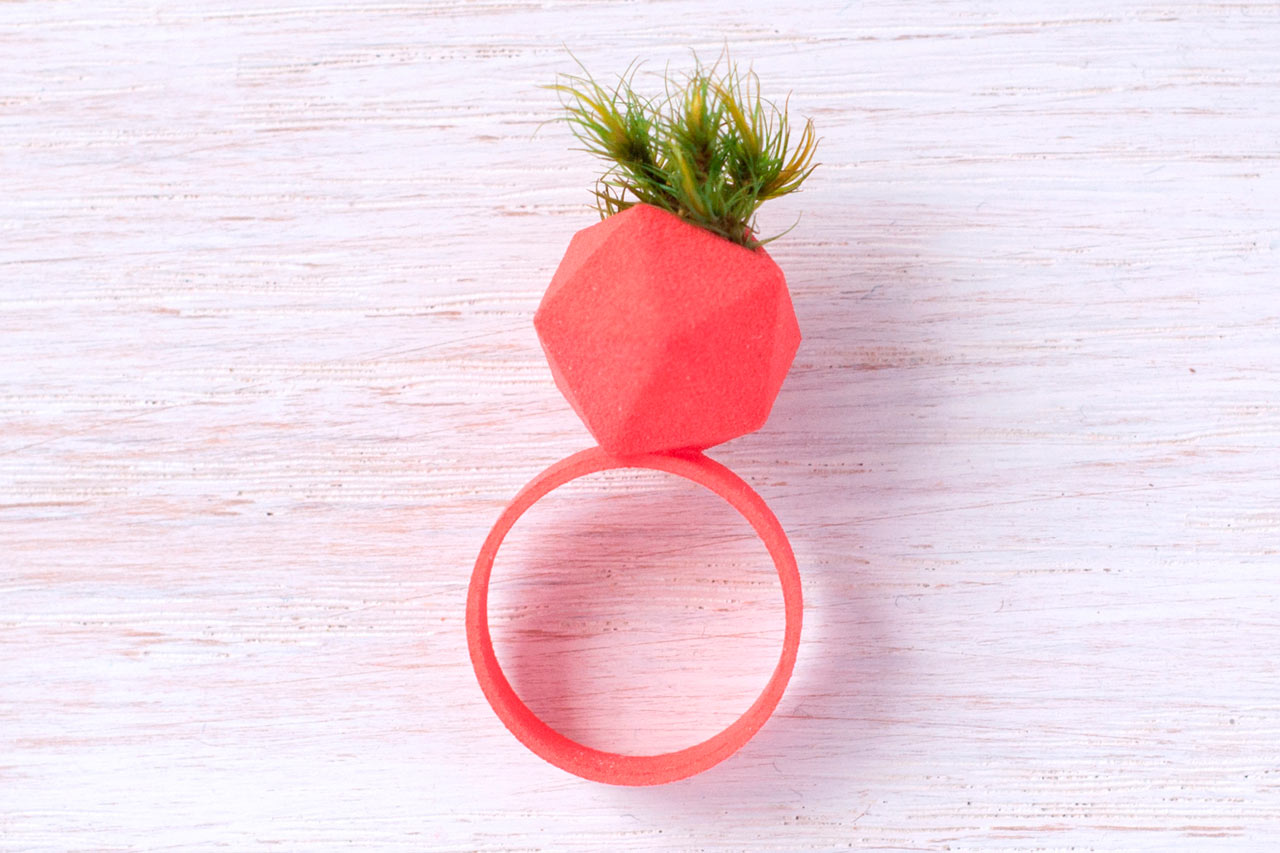 3D Printed Wearable Planter Ring