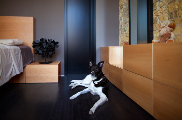 Constant-Motion-Loft-Alex-Bykov-10-dog