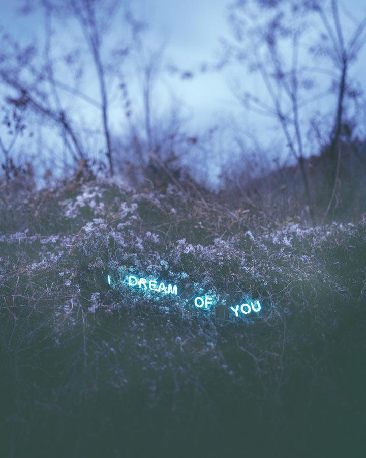 Jung-Lee-I-Dream-Of-You-2012.jpg