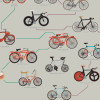 Pop-Chart-Lab-The-Evolution-of-Bicycles-print-3-closeup
