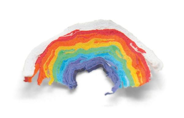 Rainbow-Pencils-Duncan-Shotton-2
