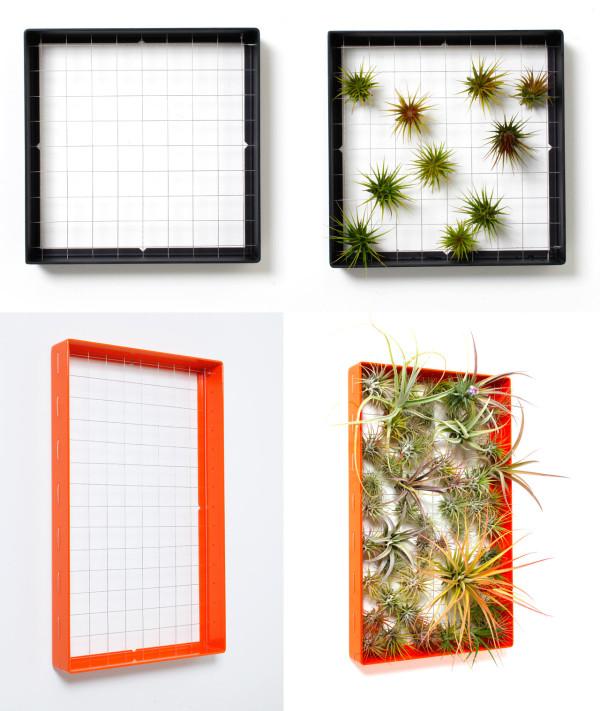 Living Wall Art Vertical Garden Frames by Airplantman - Design Milk