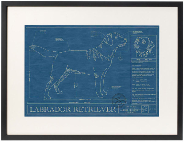 dog-breed-blueprints