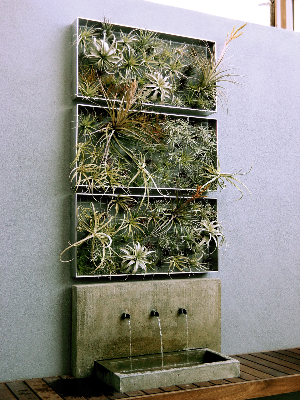 "backReturn to ""Living Wall Art Vertical Garden Frames by Airplantman"""