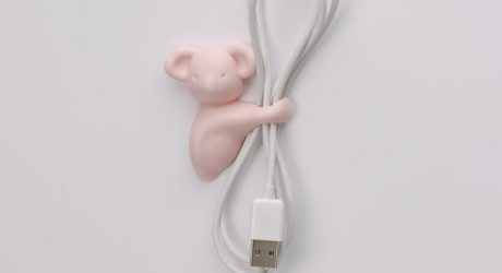 "Cute Koala ""Hugs"" Your Cables and Stuff"