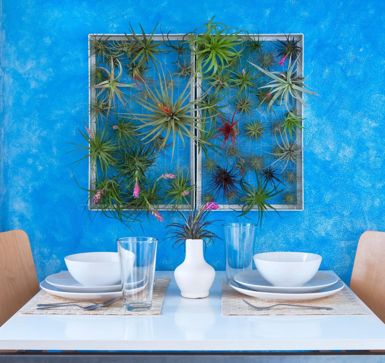 Wall Decor With Plants : Outdoor wall decor ideas frame plants design milk