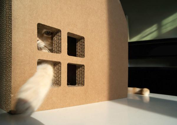 Krabhuis-Cat-Cardboard-House-4