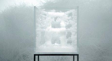 Growing Chairs: Spider's Thread by Tokujin Yoshioka