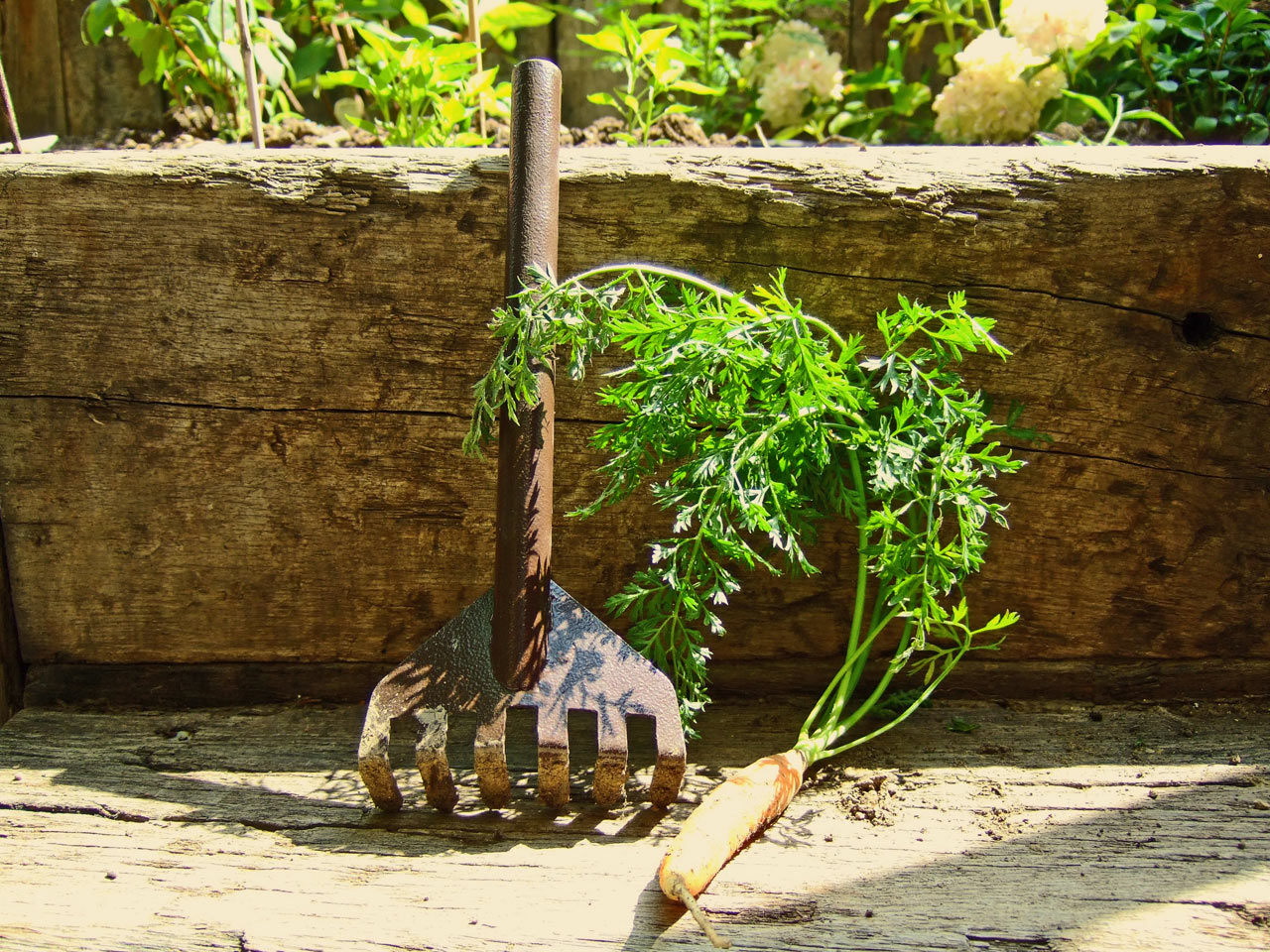 Internoitaliano_Orte_Garden-Tools-10