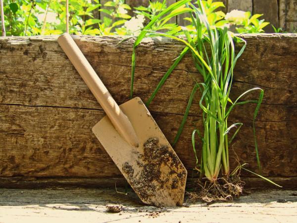 Internoitaliano_Orte_Garden-Tools-8