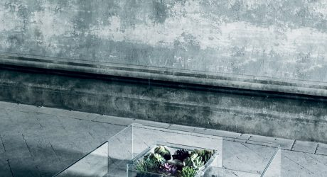 A Glass Table For All Seasons by Jean-Marie Massaud