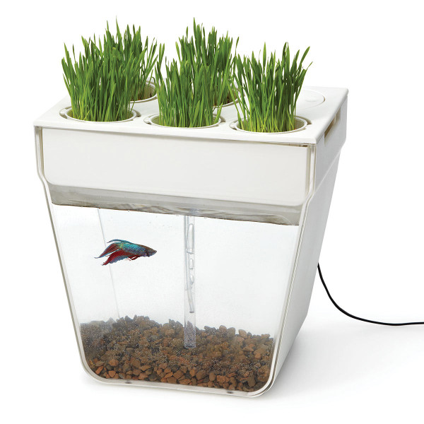 10 uncommon gifts for someone who has everything design milk for Fish tank herb garden