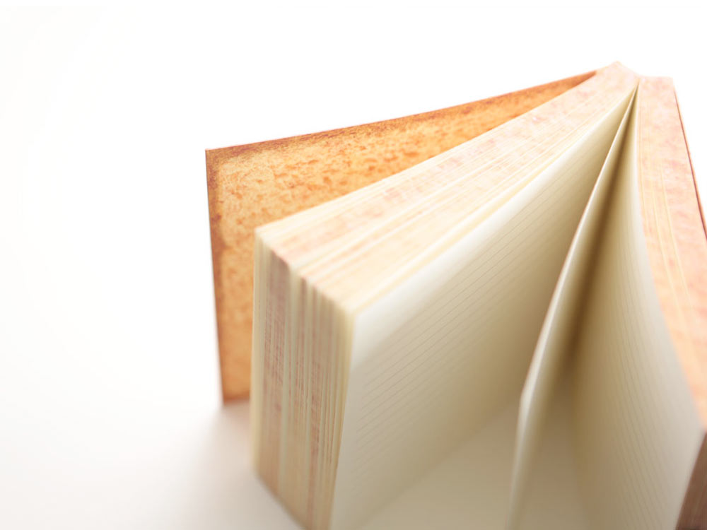 bRead-Notebook-Daycraft-4