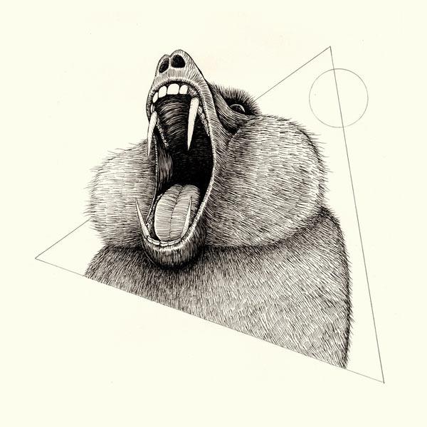 s6-baboon-print-triangle