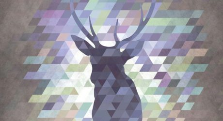 Fresh From The Dairy: Wild Animals Meet Geometry