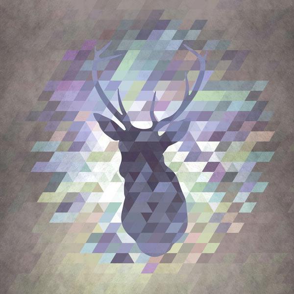 Fresh From The Dairy: Wild Animals Meet Geometry