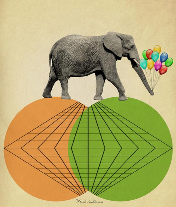 s6-elephant-print