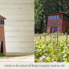 Birdbnb-Airbnb-birdhouses-7-Gaston